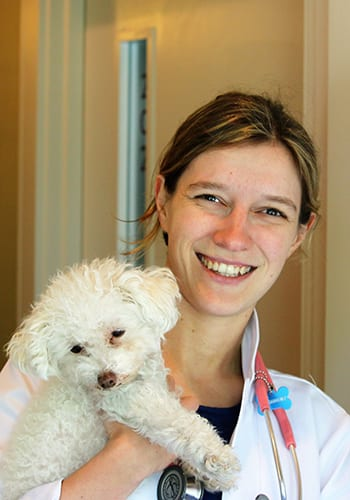 Veterinarians in Boston: Tess Gannaway DVM